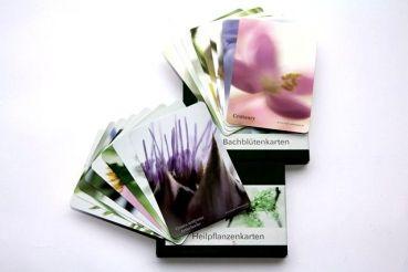 Bachblüten und Heilpflanzen Kartenset - 2 Kartensets