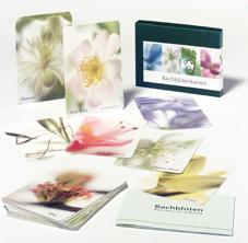 Bachblüten Kartenset